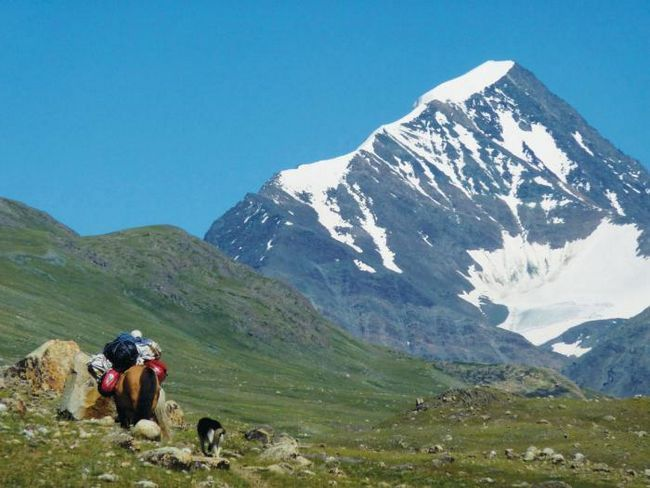 Алтайский край и республика алтай - удивительные места для активного отдыха