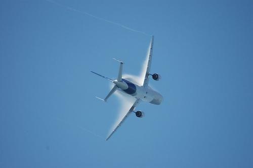 beluga aviona