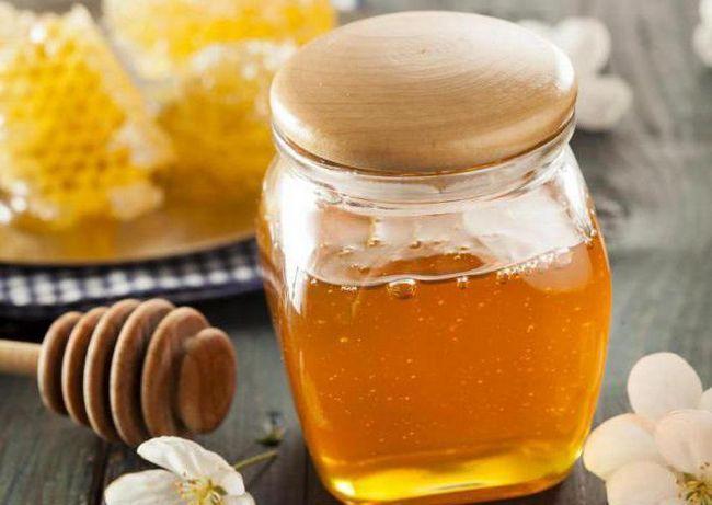 Чем полезен луговой мед?