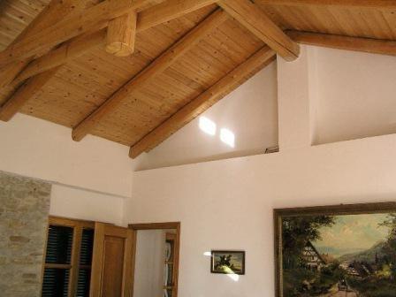 nego za izolaciju plafona u privatnoj kući