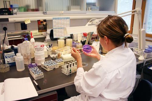 Analiza za latentne infekcije