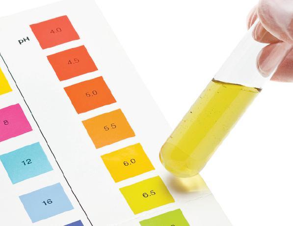 Urina analiza dešifrovanje