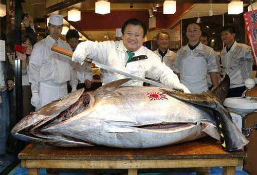 самая дррогая в мире рыба фото