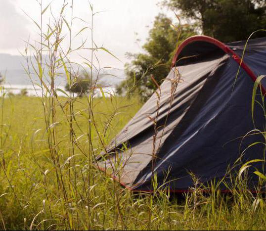 Где в подмосковье отдохнуть с палатками (фото)?