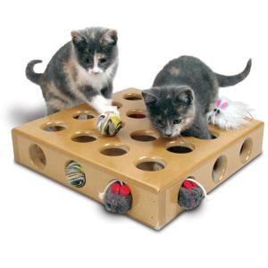 igračke za mačiće fotografija
