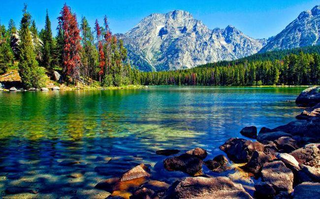 šta dreams jezera