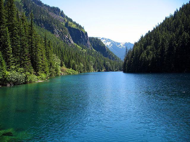 šta san da plivaju u jezeru