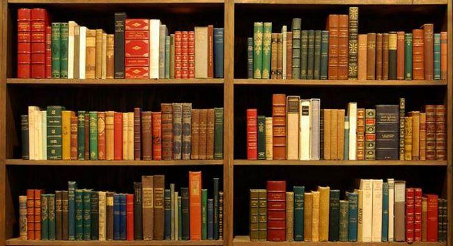 sanjati biblioteka