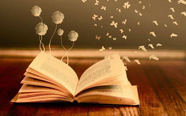 vidjeti u knjizi snu