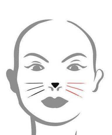 Kako crtati mačka lice. Upute i preporuke