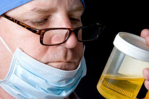 urina, gdje predaje