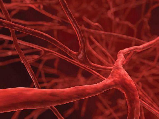Как влияет на организм алкоголь, сосуды расширяет или сужает?