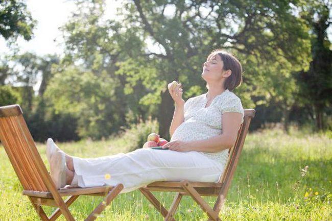 какие успокоительные можно принимать во время беременности