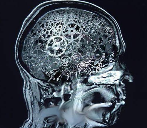 Kibernetika - da je za znanstvenike?