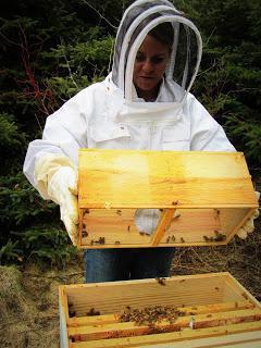 Hranilice za pčele sa svojim rukama (fotografija)
