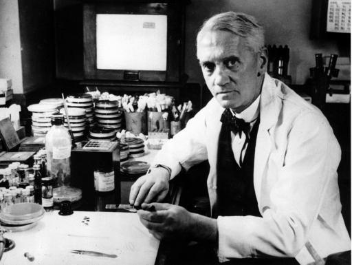 Koji je otkrio penicilin? Povijest otkrića penicilina