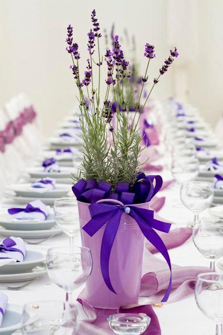vjenčanje u lavande
