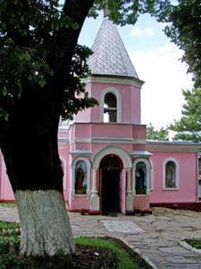 топловский монастырь купели