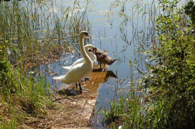 odredba Smolensk Lakes National Park