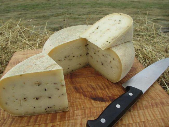 корсиканский сыр из овечьего молока