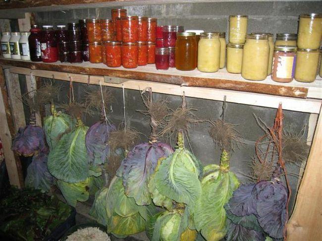 zgrade za skladištenje povrća