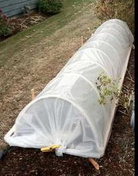 Greenhouse hacienda 6m recenzije