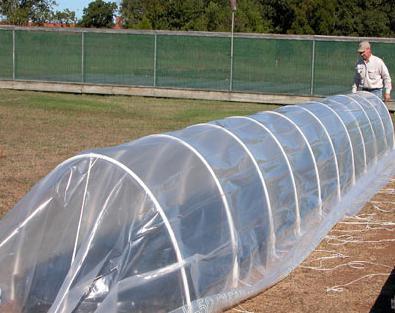 Greenhouse hacijendu sa svojim rukama
