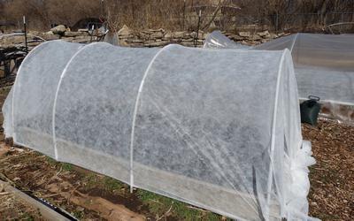 Mini Greenhouse Snowdrop, recenzije