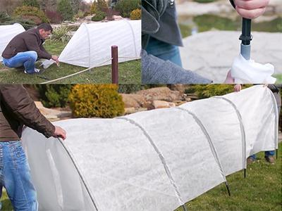 Greenhouse visibaba ne sviđa