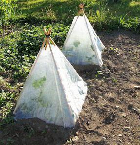 Greenhouse rukama od otpadnog materijala