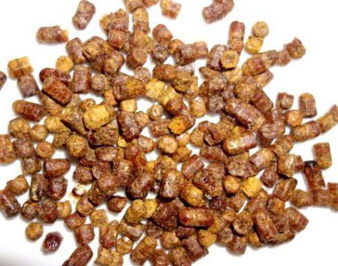 Пчелиный хлеб: полезные свойства и применение