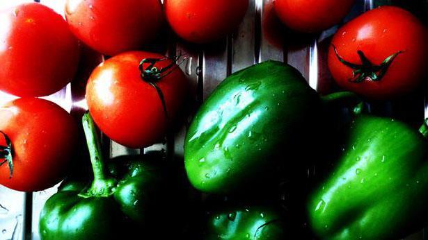 Paprike sa rajčicama za zimu. Najbolji recepti