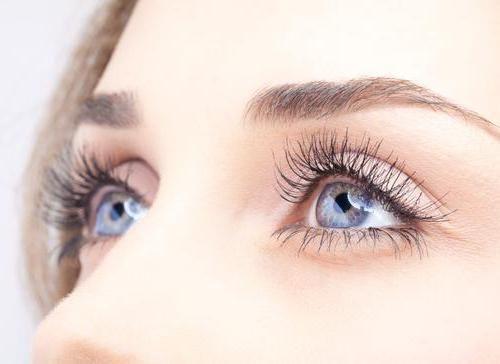 Полезные продукты для улучшения зрения