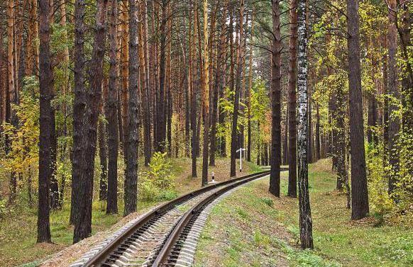 Zaeltsovskiy Park Novosibirsk cijene