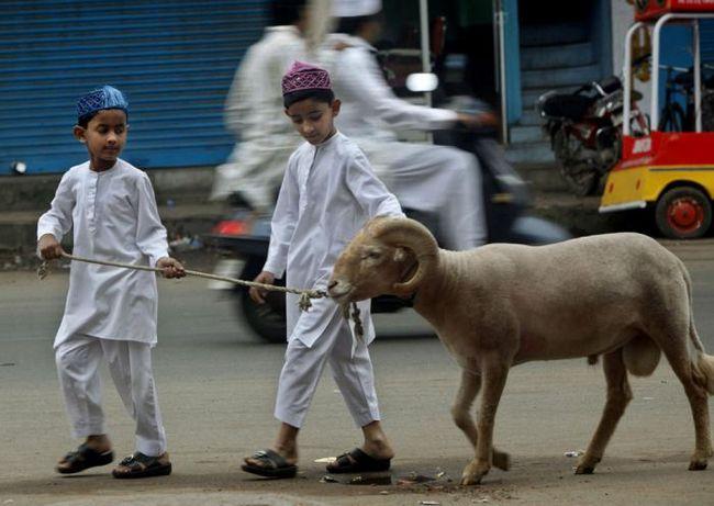 Ramazan bajram - proslave tradicije