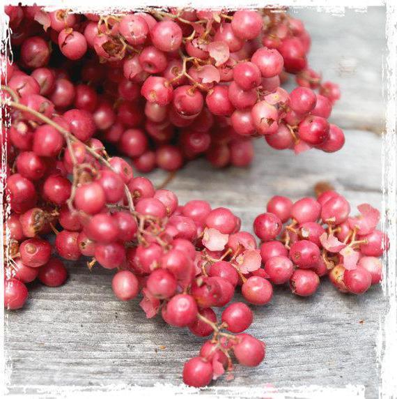 розовый перец аромат