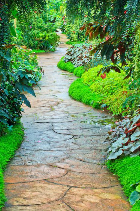 Vrt staze sa svoje ruke uz niske troškove materijala pri ruci. Primjeri dizajna, dimenzija, fotografije