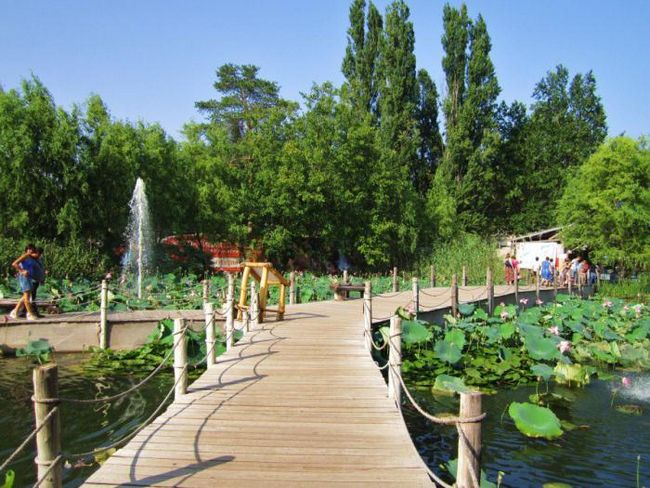 adresu safari park u Krasnodaru