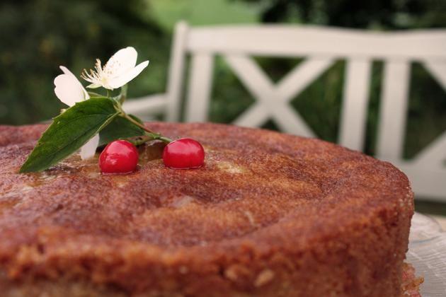 Pita sa višnjama i jabukama