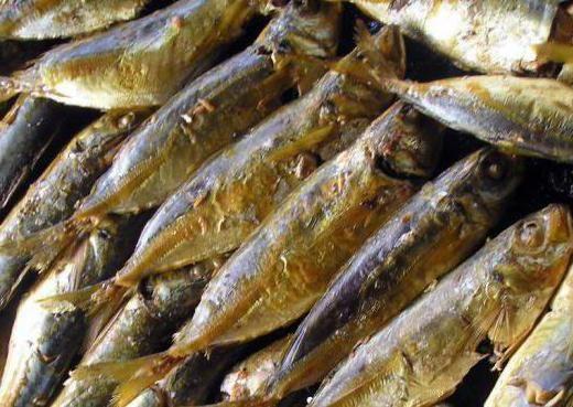Сколько и как хранить копченую рыбу в домашних условиях?