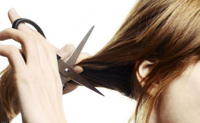 Sanjati Tumačenje: ošišani šta san?