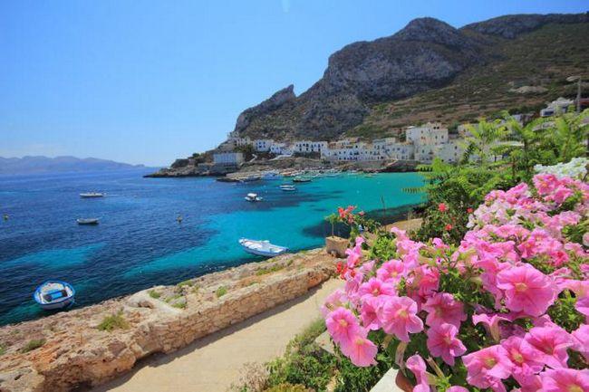 Terme Mediterraneo 4 *: Hotel infrastruktura