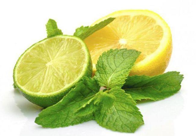 Зеленый лимон от лайма чем отличается? Различия и сходство