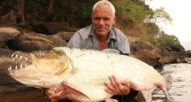 опасные рыбы мира